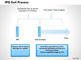 1203 Ipo Exit Process Powerpoint Presentation