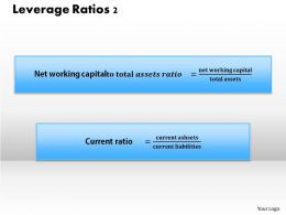 1203 Leverage Ratios 2 Powerpoint Presentation