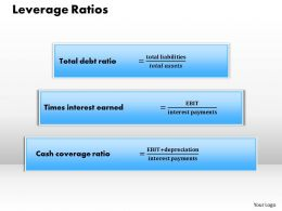 1203 Leverage Ratios Powerpoint Presentation