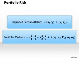1203 Portfolio Risk Powerpoint Presentation