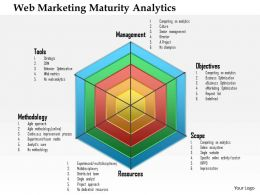 1214 Web Marketing Maturity Analytics Powerpoint Presentation
