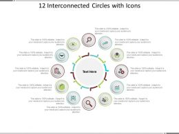 12 Interconnected Circles With Icons
