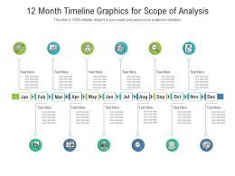 12 Month Timeline Graphics For Scope Of Analysis Infographic Template