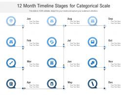 12 Month Timeline Stages For Categorical Scale Infographic Template