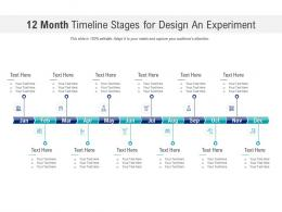 12 Month Timeline Stages For Design An Experiment Infographic Template