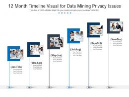 12 Month Timeline Visual For Data Mining Privacy Issues Infographic Template