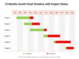 12 Months Gantt Chart Timeline With Project Status Ppt Powerpoint Presentation Aids
