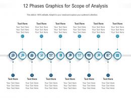12 Phases Graphics For Scope Of Analysis Infographic Template