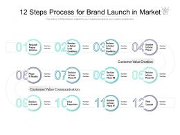 12 Steps Process For Brand Launch In Market