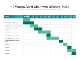 12 Weeks Gantt Chart With Different Tasks