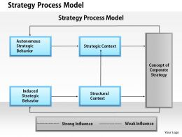 1403 Strategy Process Model Powerpoint Presentation