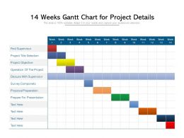 14 Weeks Gantt Chart For Project Details