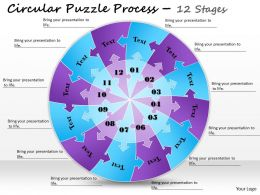 1813_business_ppt_diagram_circular_puzzle_process_12_stages_powerpoint_template_Slide01