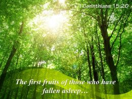 1_corinthians_15_20_the_first_fruits_of_those_powerpoint_church_sermon_Slide01