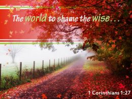 1 Corinthians 1 27 The World To Shame The Wise Powerpoint Church Sermon