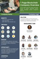 1 Page Blockchain Company Overview Presentation Report Infographic PPT PDF Document