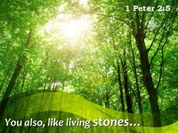 1 Peter 2 5 You Also Like Living Stones Powerpoint Church Sermon