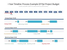 1 Year Timeline Process Example Of Ppt Project Budget