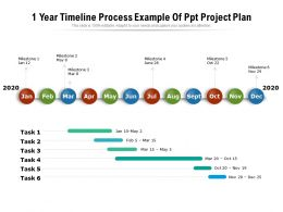 1 Year Timeline Process Example Of Ppt Project Plan