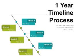 1 Year Timeline Process Powerpoint Ideas
