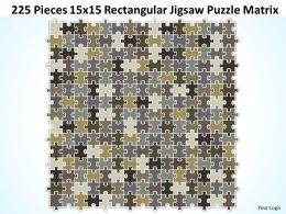 225 Pieces 15x15 Rectangular Jigsaw Puzzle Matrix Powerpoint templates 0812