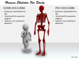2413 Human Skeleton For Study Ppt Graphics Icons Powerpoint