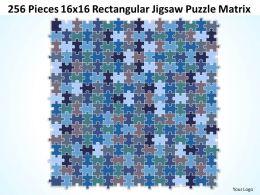 256 Pieces 16x16 Rectangular Jigsaw Puzzle Matrix Powerpoint templates 0812