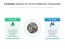 2 Columns Graphics For Income Statement Components Infographic Template