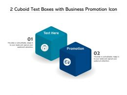 2 Cuboid Text Boxes With Business Promotion Icon