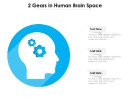 2 Gears In Human Brain Space