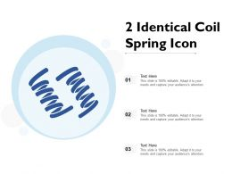 2 Identical Coil Spring Icon