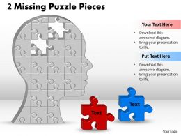 2 Missing Puzzle Piece In Silhouette Brain