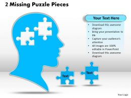 2 Missing Puzzle Pieces