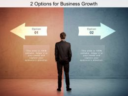 2 Options For Business Growth