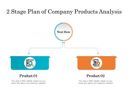 2 Stage Plan Of Company Products Analysis