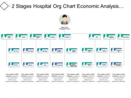 2 Stages Hospital Org Chart Economic Analysis Budgeting And Controlling
