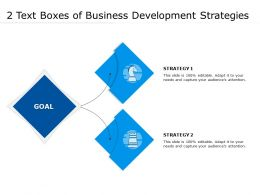 2 Text Boxes Of Business Development Strategies