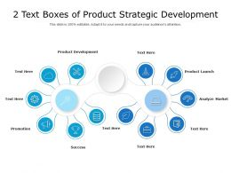 2 Text Boxes Of Product Strategic Development