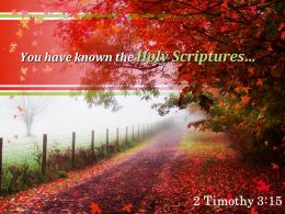 2 Timothy 3 15 You Have Known The Holy Scriptures Powerpoint Church Sermon