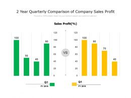 2 Year Quarterly Comparison Of Company Sales Profit
