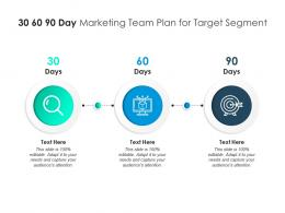 30 60 90 Day Marketing Team Plan For Target Segment Infographic Template