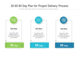 30 60 90 Day Plan For Project Delivery Process Infographic Template