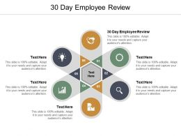 30 Day Employee Review Ppt Powerpoint Presentation Slides Influencers Cpb