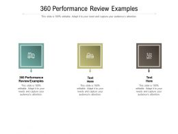 360 Performance Review Examples Ppt Powerpoint Presentation Infographic Template Gallery Cpb