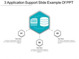 3 Application Support Slide Example Of Ppt