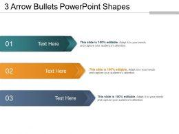 3 Arrow Bullets Powerpoint Shapes