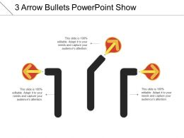 3 Arrow Bullets Powerpoint Show
