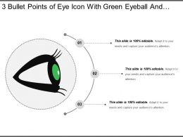 3 Bullet Points Of Eye Icon With Green Eyeball And Black Eyelashes