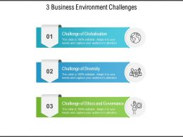 3 Business Environment Challenges