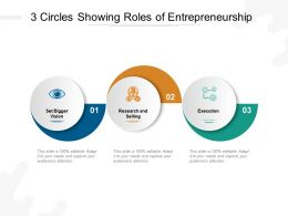 3 Circles Showing Roles Of Entrepreneurship